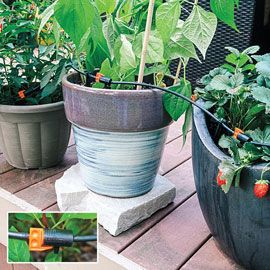 Henry Field's Drip Irrigation for Containers