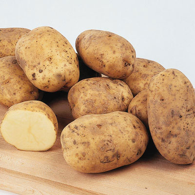 Early Ohio Potato