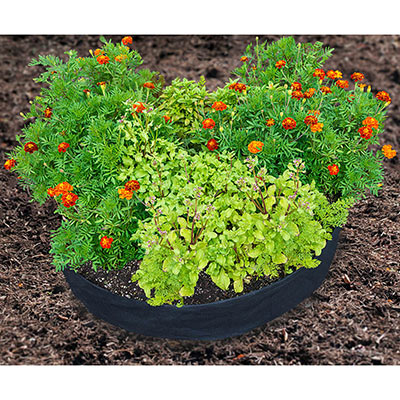 Raised Bed Grow Tub®