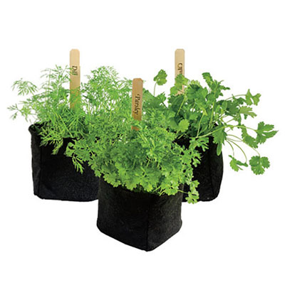 Grow Tub<sup>&reg;</sup> Transplant Pots