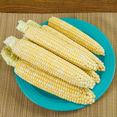That's Delicious! Hybrid Sweet Corn (sh2)