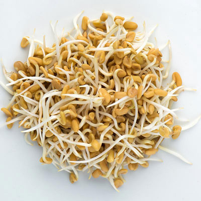 Sprouts Fenugreek 4 OZ