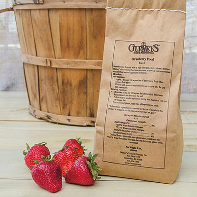 Gurney's<sup>®</sup> Strawberry Food