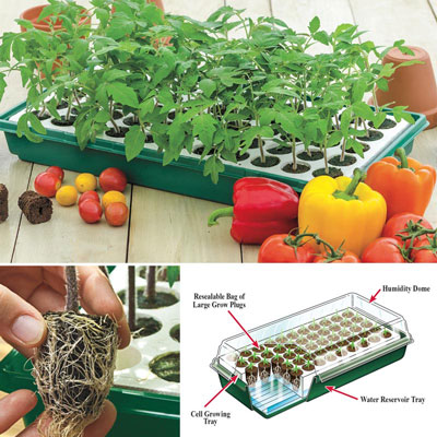 Henry Field's® Seed Starting Kit