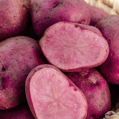 Mountain Rose Potato