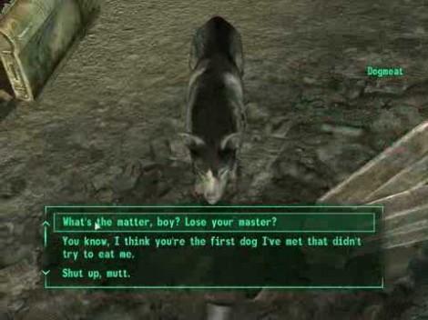 Fallout Dog