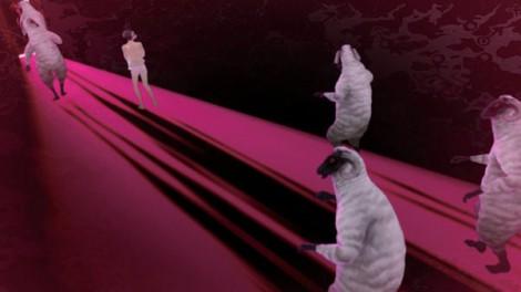 Catherine: Sheep