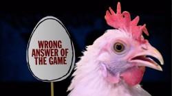 Chicken of Misfortune