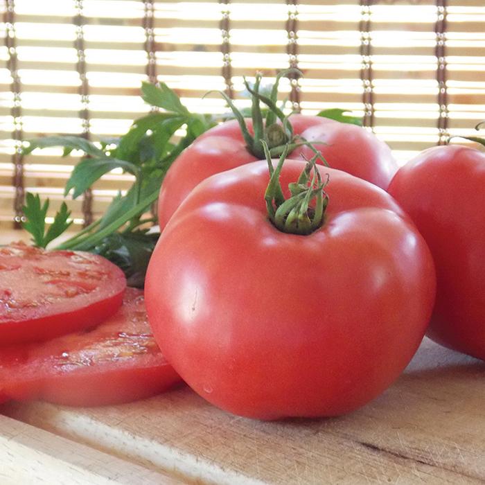 Damsel Vn Hybrid Tomato