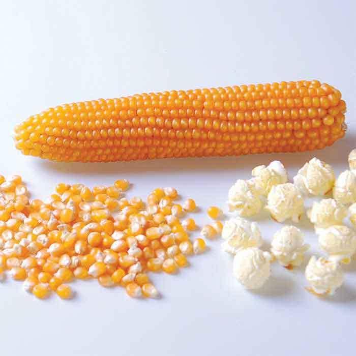 Puffy Pop Popcorn