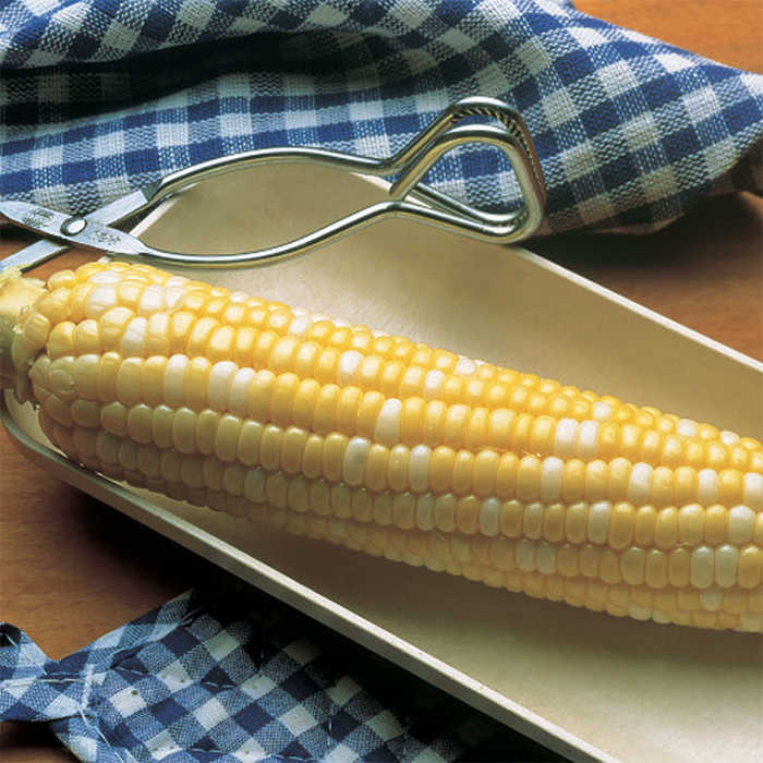 Trinity Bi-Color Sweet Corn