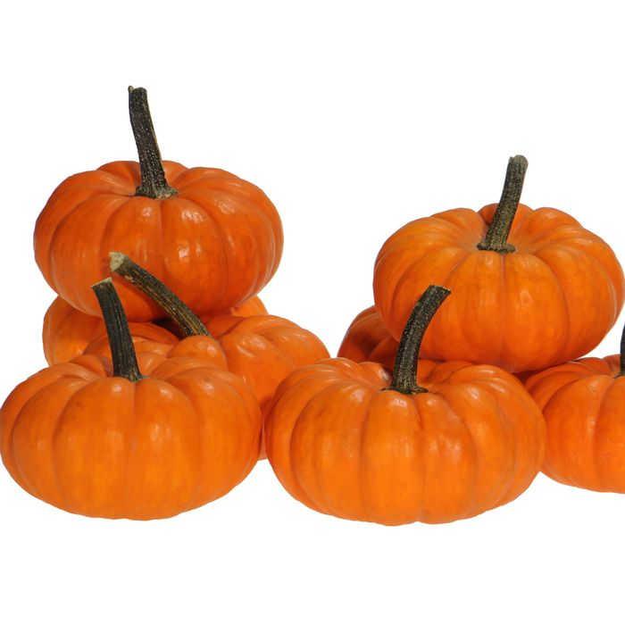 Jack Be Little Pumpkin