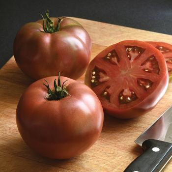 Darkstar V Hybrid Tomato