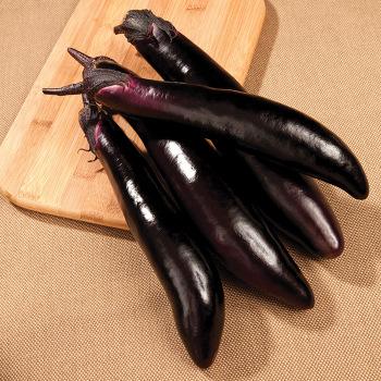 Shikou Hybrid Eggplant Pixie Stakes