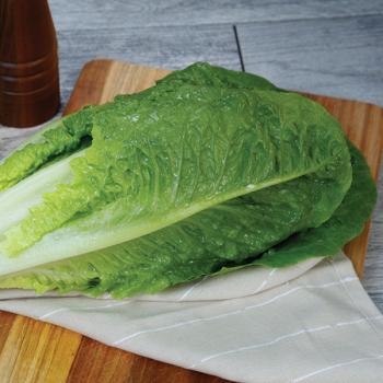 Fresh/Heart Romaine Lettuce