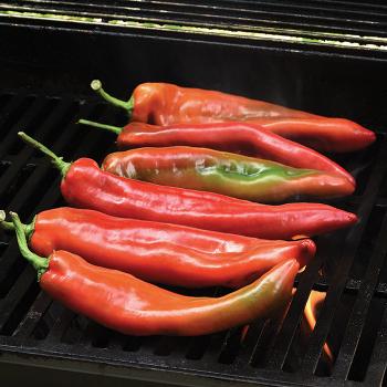 Peppigrande Red Hybrid Pepper