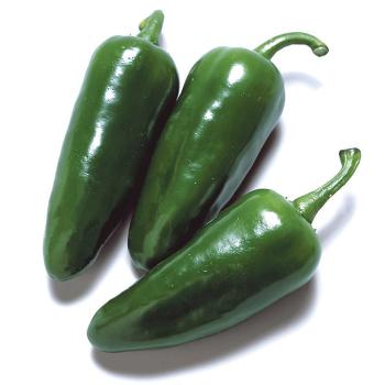Felicity Hybrid Pepper