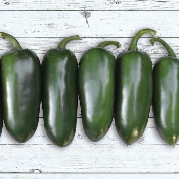Emerald Fire Hybrid Pepper