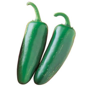 Mucho Nacho Jalapeno Hybrid Pepper - Pixie Stakes