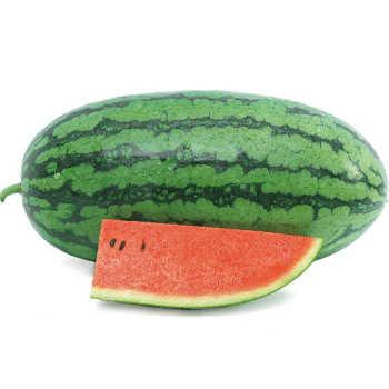 Sweet Beauty Hybrid Watermelon