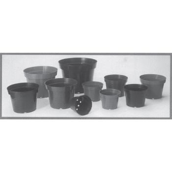 Azalea Pot