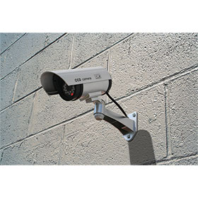 Simulated Security Camera