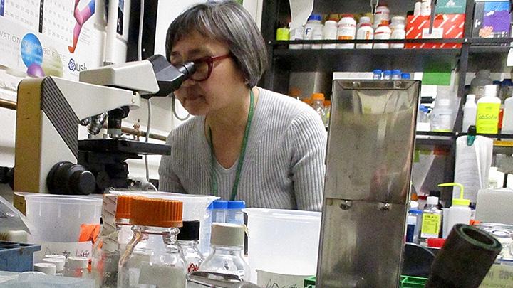 Dr. Rita Shian