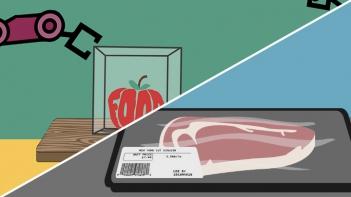 nano food safety
