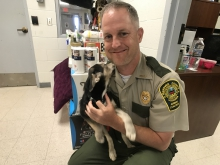 animal control employee with dog