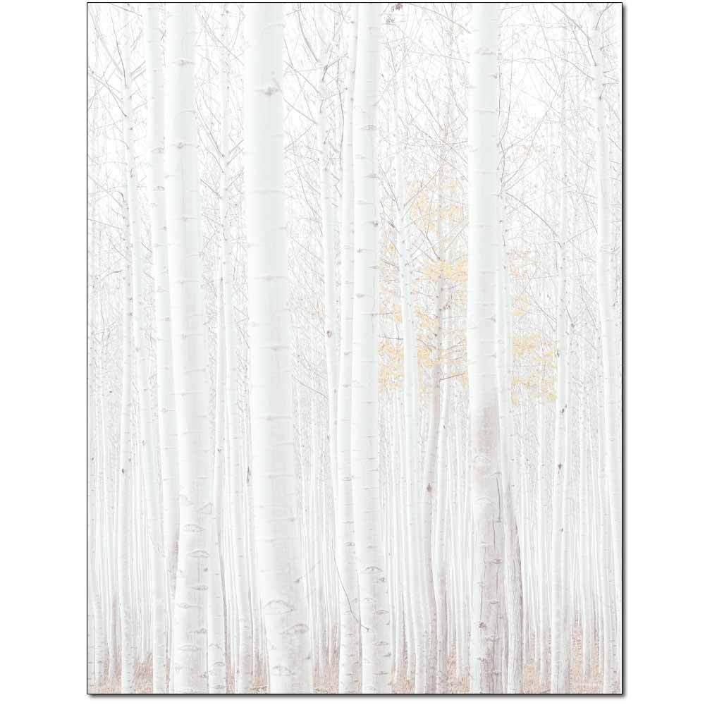 Birch Grove Letterhead