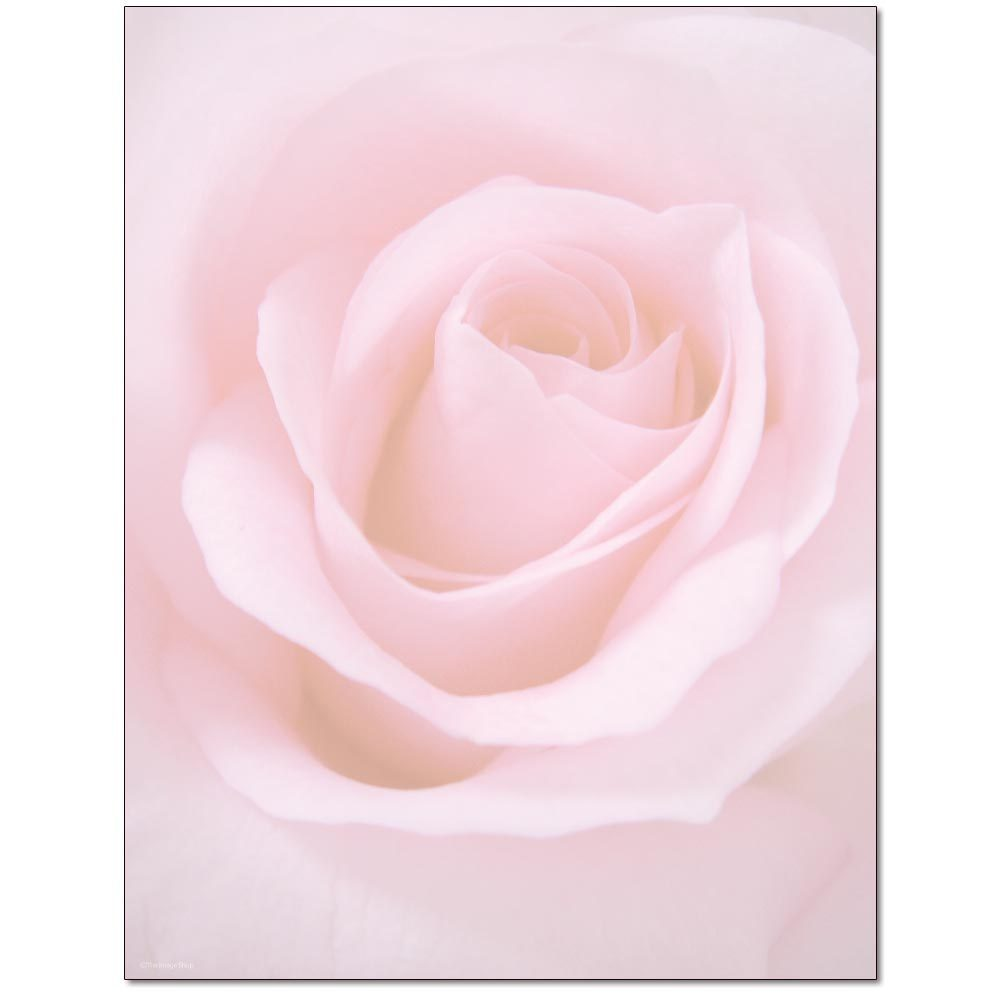 Blushing Rose Letterhead