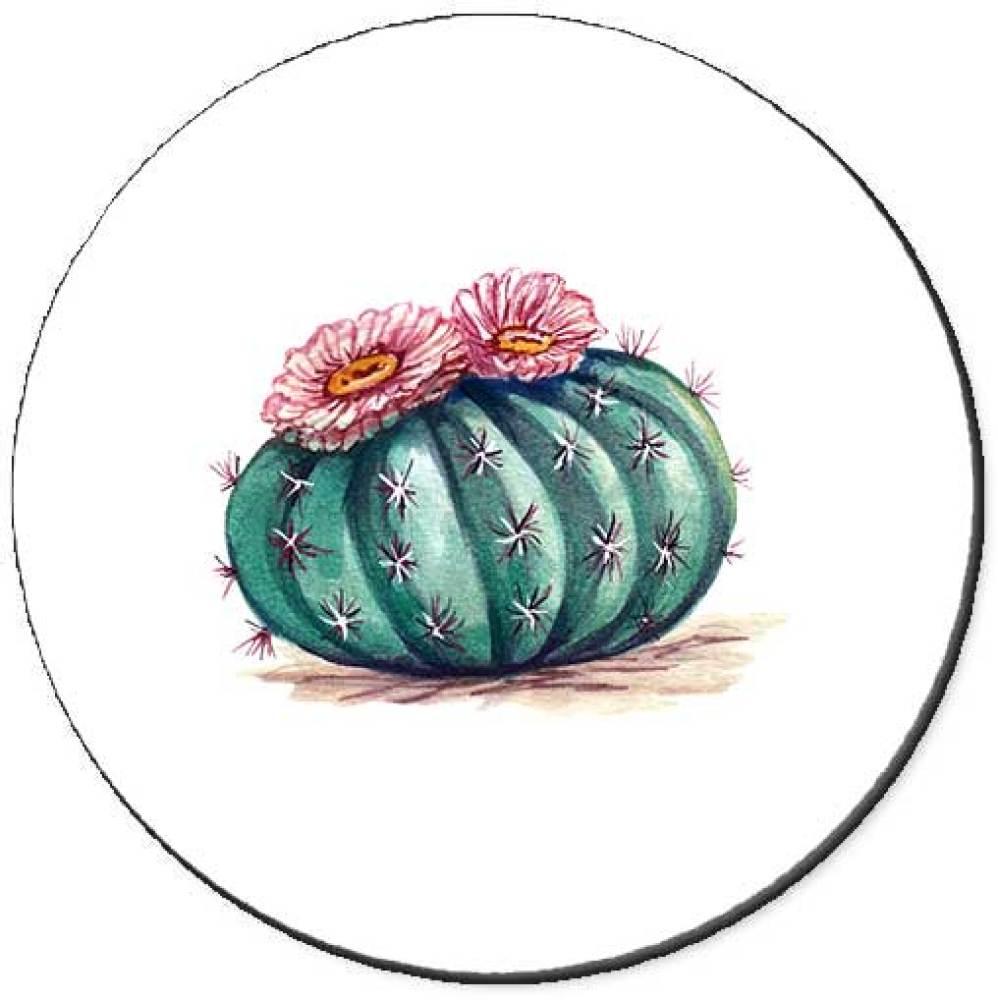 Cactus Patch Seals