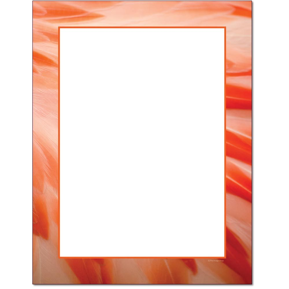 Flamingo Feathers Letterhead