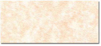 Parchment Envelopes