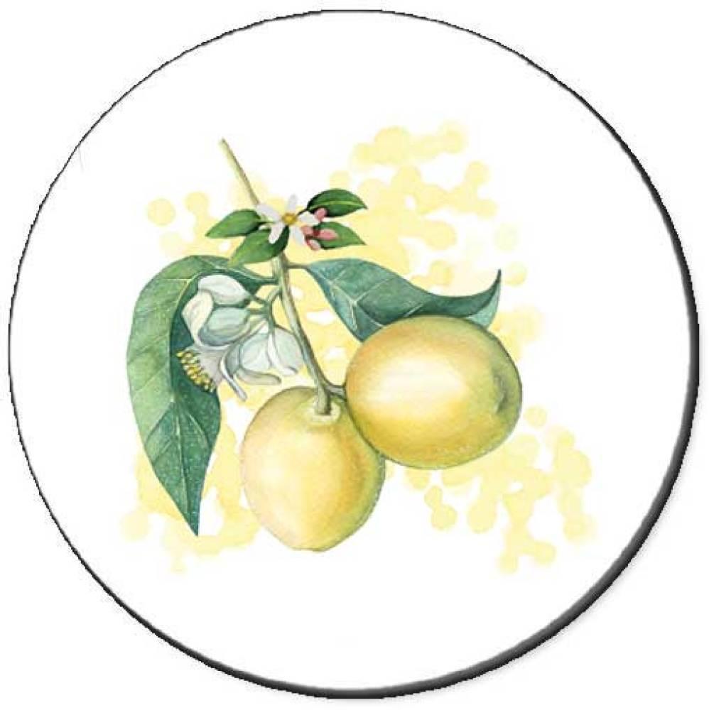 Lemon Branch Seals