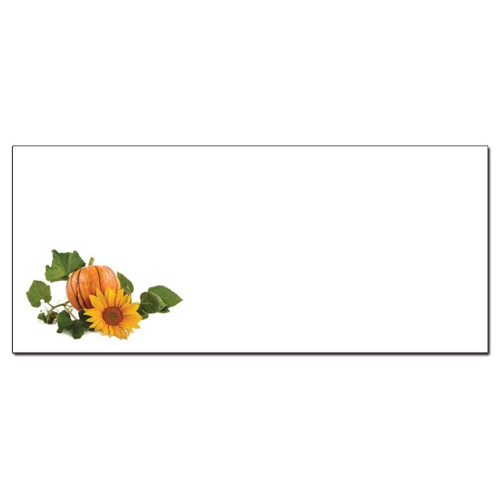 Pumpkin Patch Envelopes