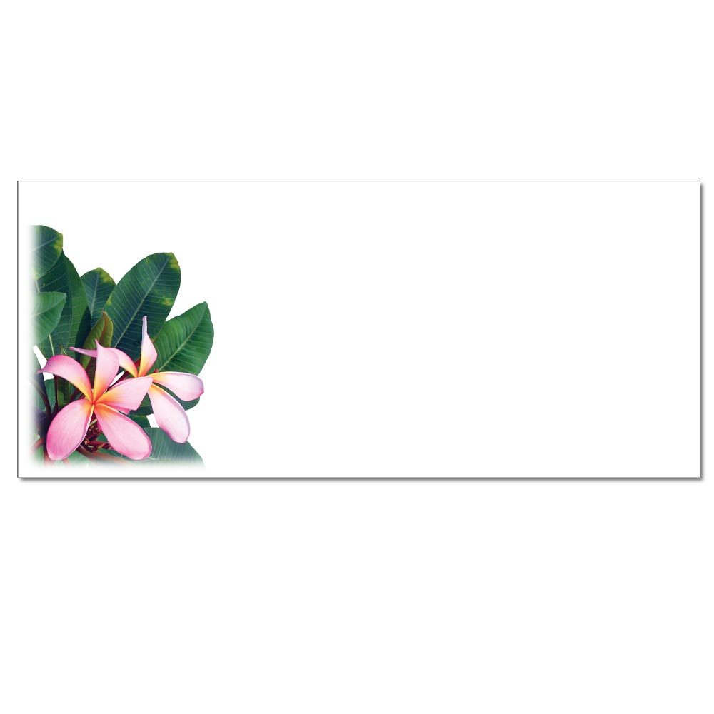 Sarah's Plumerias Envelopes