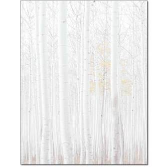 Birch Grove Letterhead - 100 pack