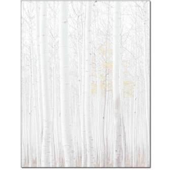Birch Grove Letterhead - 25 pack