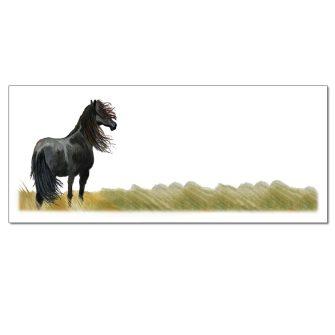 Black Stallion Envelopes