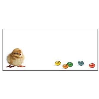 Easter Chick Envelopes - 50 Pack