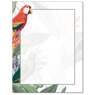 Jungle Birds Letterhead - 25 pack