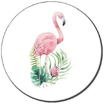 Tropical Flamingos Seals