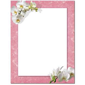 White Orchids Letterhead - 100 pack