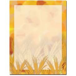 Amber Waves Letterhead - 25 pack