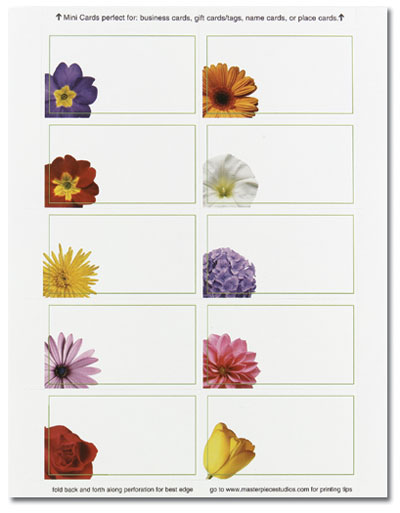 Floral Photo Mini Cards
