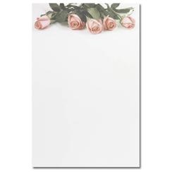 Pink Rose Petals Bifold Brochure