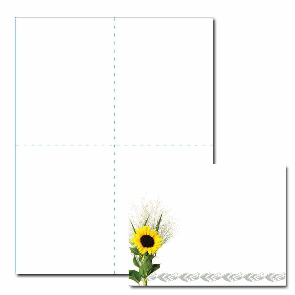 Sunflower Post Card, 200pk