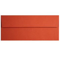 Tangy Orange #10 Envelopes - 25 Pack