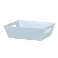 Silver Solid - Large Tray